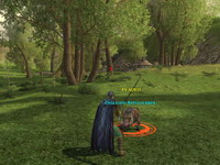 The Lord of the Rings Online: Shadows of Angmar     скриншот, 145KB