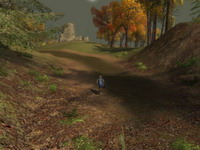 The Lord of the Rings Online: Shadows of Angmar     скриншот, 140KB