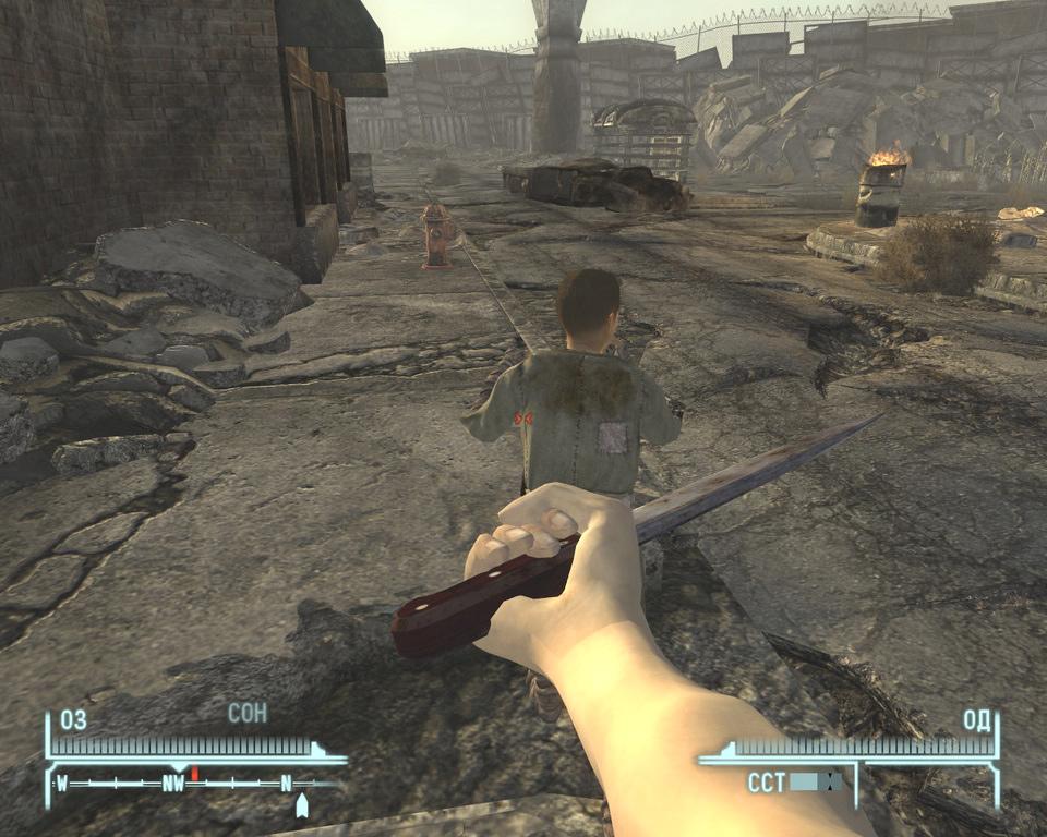 Fallout new vegas 2 спутницы шлюхи